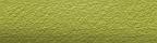 Yellow (2230s)