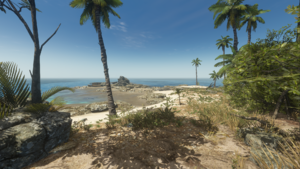 Island Foliage