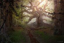 Stranger-things-concept-art-forest-rift-pic