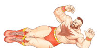 Zangief/Gallery