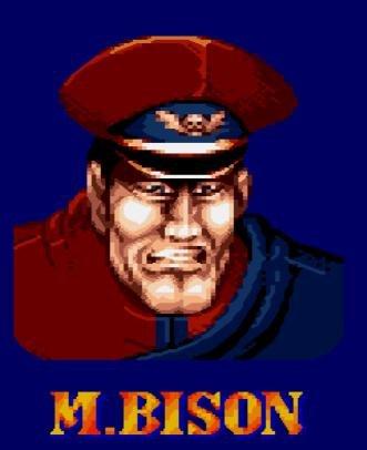 File:Bison 7.jpg