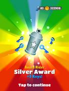 AwardSilver-BoardRider