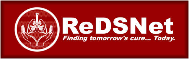 File:ReDSNet 2.png