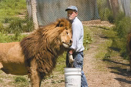 Humans vs. Animals -- Size Comparisons - Pets & Animals ...