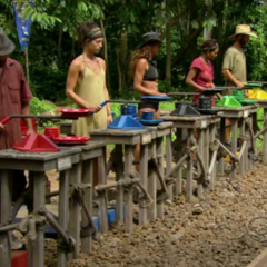 The Final 5 at the Immunity Challenge, <i><a href=