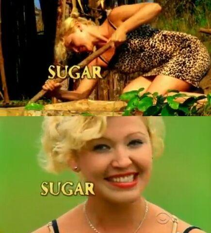 File:Sugar intro.jpg