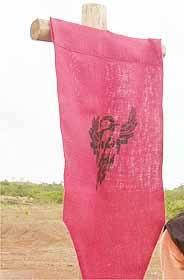 Araras flag