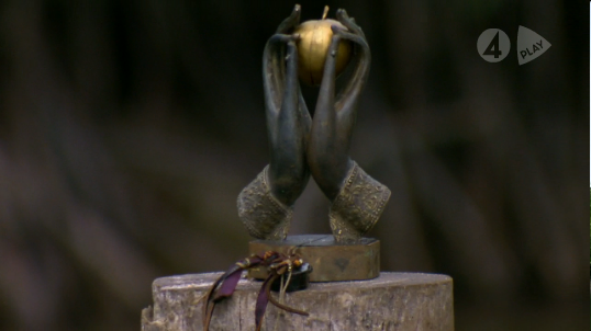 File:Immunity Idol 2.png