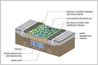 Rain Garden Design And Construction Sustainable Water