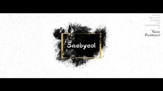 3rd Taekwondo New Poomsae (새별) Saebyeol for Age 18 30 English version