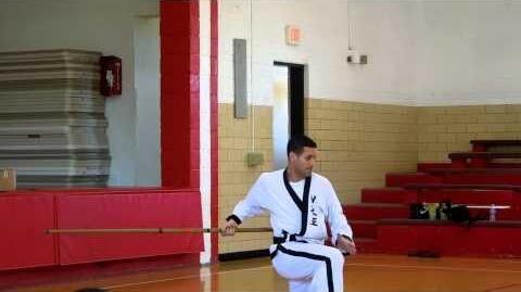 Grandmaster Brad Shipp performs Chun Kuhn Taekwondo Silla Pole Pattern