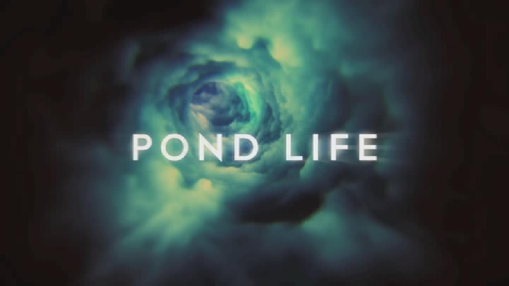 File:Pond Life titles.jpg