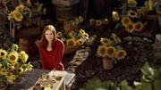 AmySunflowers