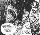 The Brotherhood (comic story)