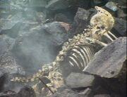 Lakertyan skeleton