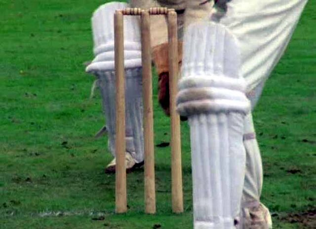 File:Cricket stumps.jpg