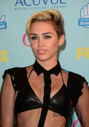 Miley Cyrus Press Room Teen Choice Awards rFdogscsn0sl