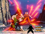 Krillin Owned Count 34