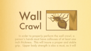 Rules-of-Robin-Wall-Crawl