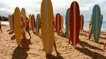 Surf Crazy (333)