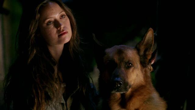File:Allison and Dog.jpg