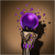 Shadowstorm Wand icon