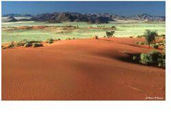 Mars terraformed land