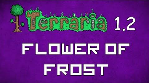 Flower of Frost - Terraria 1