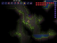 Terraria environment underground jungle