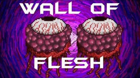 Terraria - Wall of Flesh BOSS Fight Terraria HERO