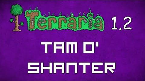 Tam O' Shanter - Terraria 1