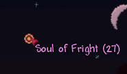 Soul of fright
