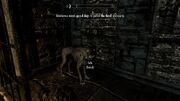 Dexternus death hound