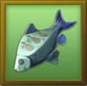 File:MAT fish.png