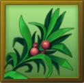 File:MAT herbs.png