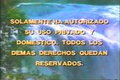 Videovisa 1990 c