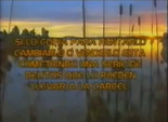 Videovisa 1989 d