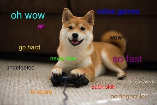 Doge shibe original - photo#5