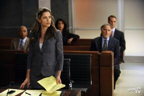 The-Good-Wife-Episode-4-08-Here-Comes-the-Judge-Promotional-Photo-the-good-wife-32744151-595-396