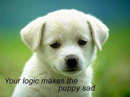 File:YOU MAKE PUPPY SAD! SHAME!.jpg