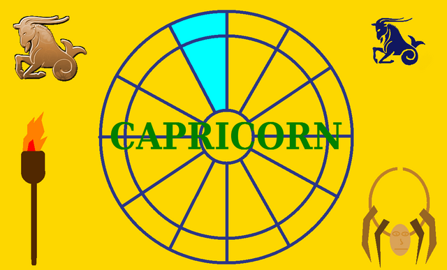 File:Capricorn Flag.png