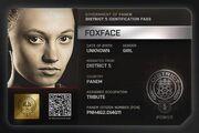 Foxface-DIP1
