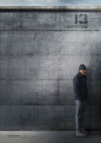 File:Haymitch character poster.jpeg