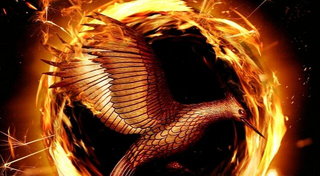File:Official-Hunger-Games-Catching-Fire-Motion-Poster-Is-Out.jpg