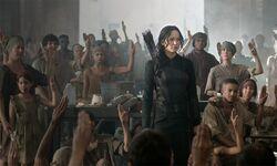 Katniss23