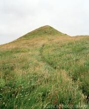 O' grassy hill