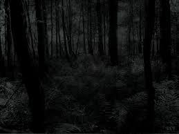 File:Dark forest.jpg