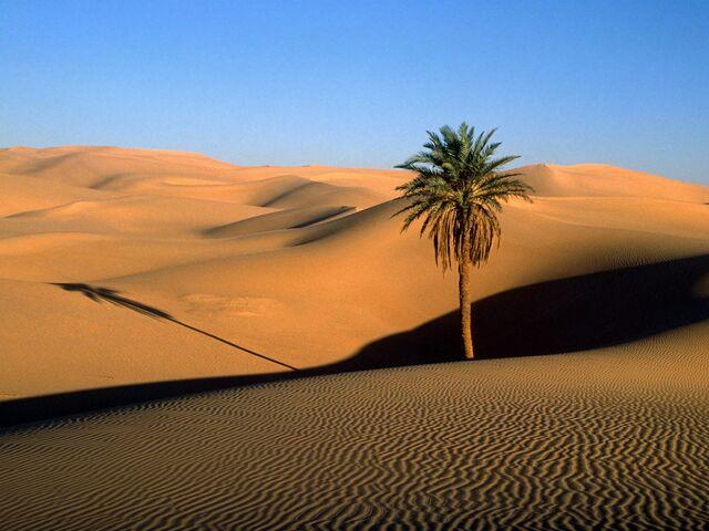 File:Desert region.jpg