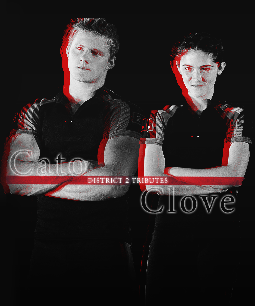 Image - District 2! CATO AND CLOVE.png | The Hunger Games ...