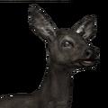 Roe deer female melanistic